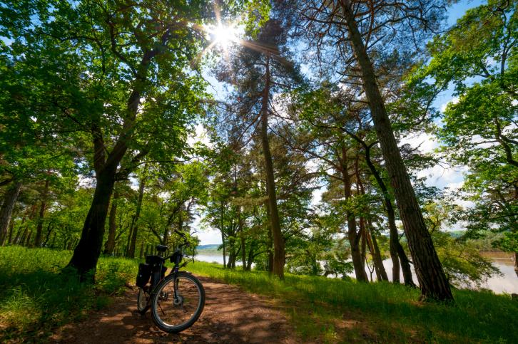 Leichter mit dem Fahrrad unterwegs: das E-Bike